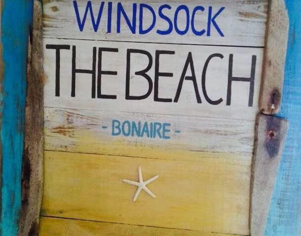 The Beach Windsock - QVillas