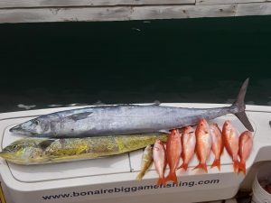 bonaire big game fishing