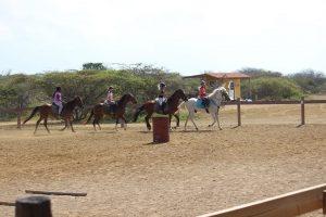 horse ranch bonaire